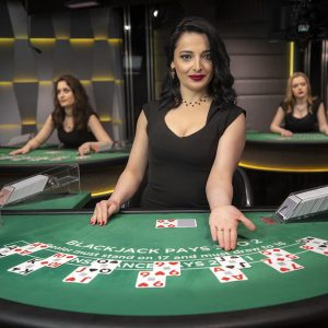Eight Reasons Your Casino Is just not What It Needs to be